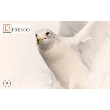 Фреска Renaissance Fresco Animals (F3016)