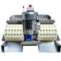 Косточковыбивная машина для вишни и черешни КВ-250