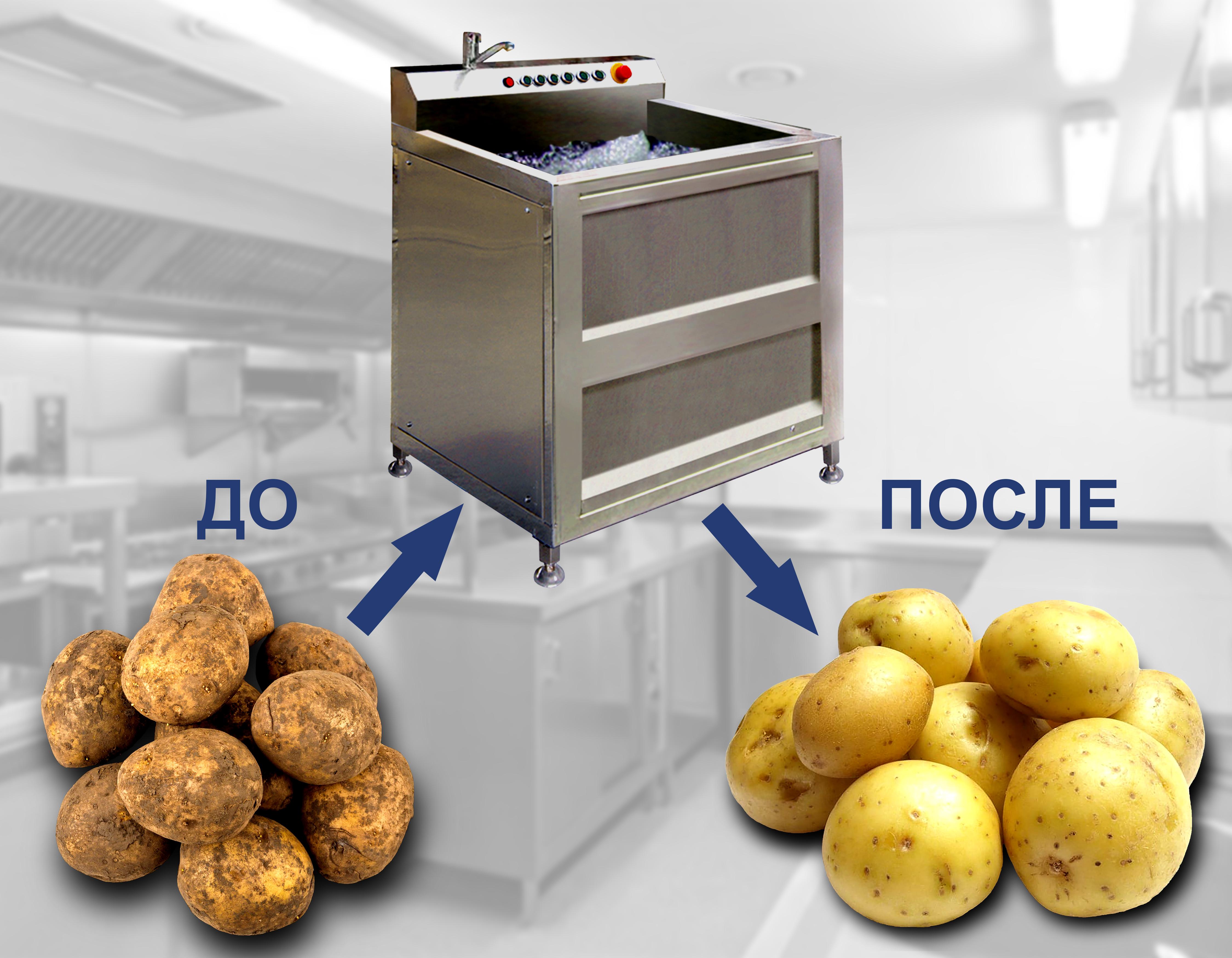 Автоматическая моечная машина для овощей и фруктов